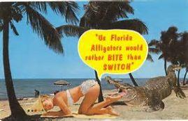 Florida 4